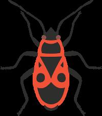 firebug-3619933_960_720.png